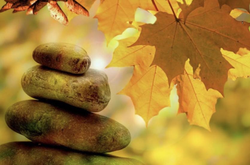 Autumn Women's Wellness Retreat